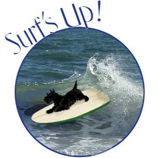 Surfing Scot