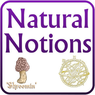 Natural Notions