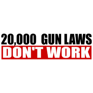 20,000 Gun Laws