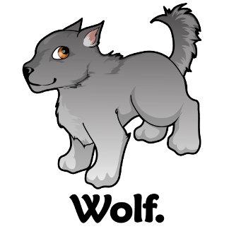 Wolf. Wolf