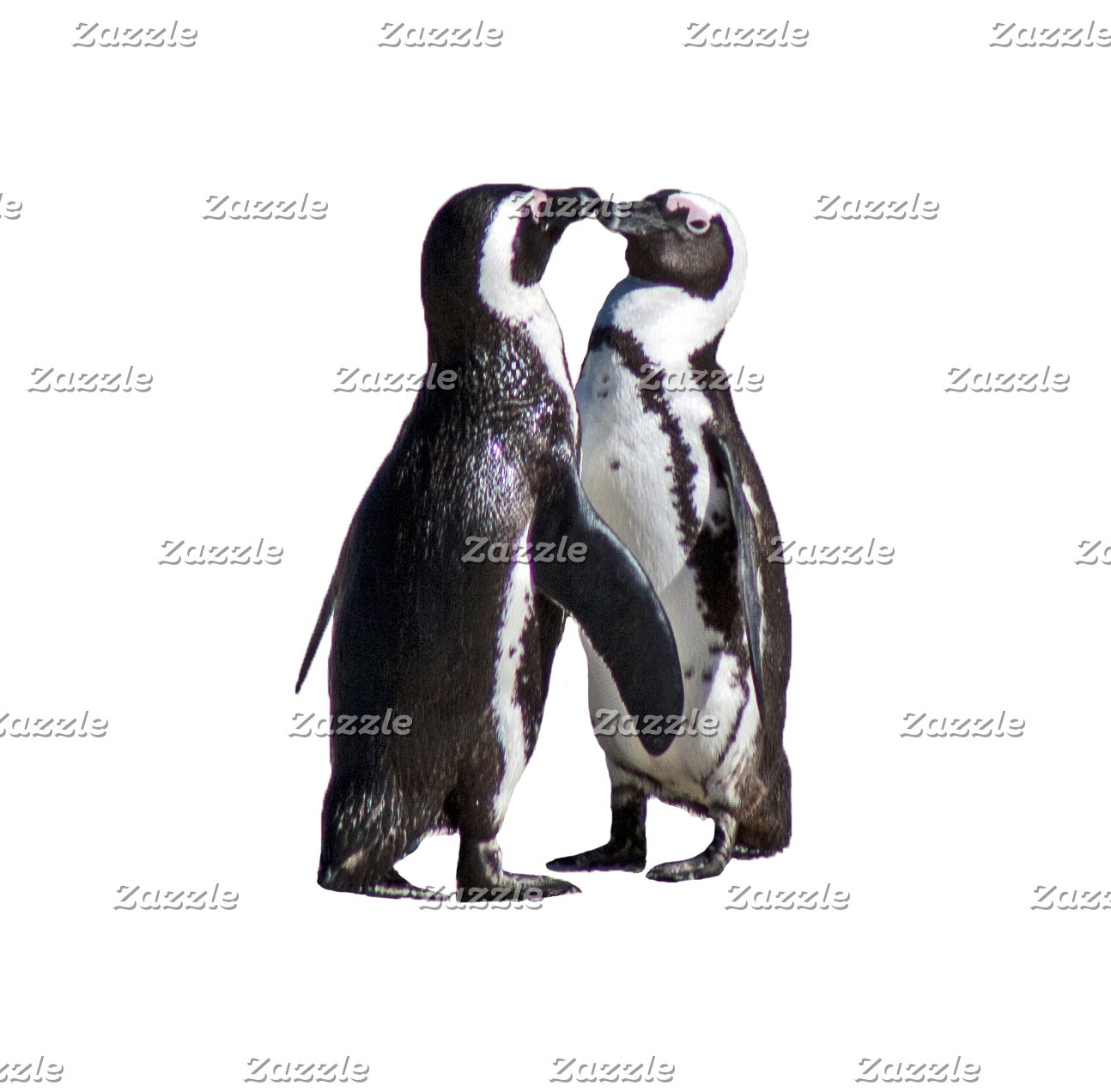 Penguin Romance