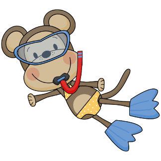 Beach Monkey - Snorkeling