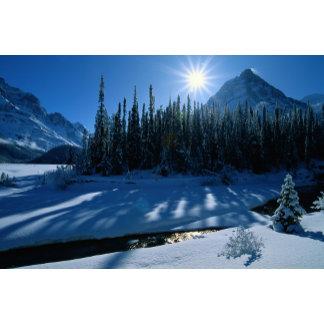 Athabasca Pass, Alberta, Canada.