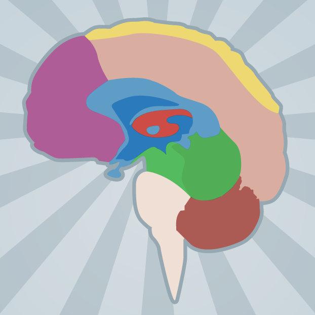 Brainwall