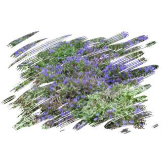 Purple Fields of Joy