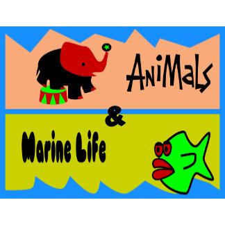 Animals & Marine Life
