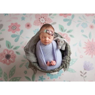 Newborn Photographer Gear
