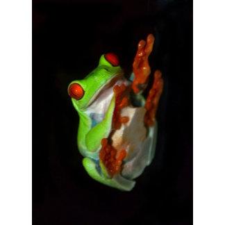 Floating Treefrog