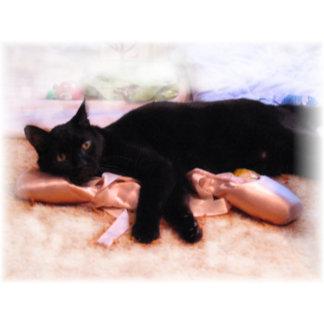 Feline Ballerina