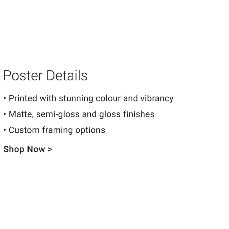 Custom Poster details and sizes