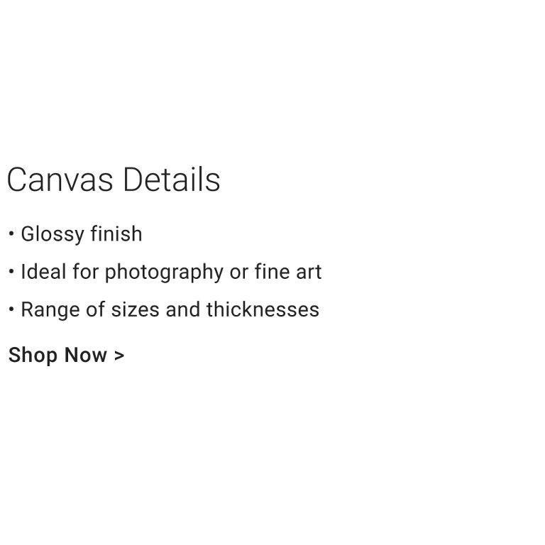 Custom Canvas Print Sizes