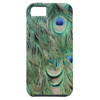Swag Green And Blue Peacock Feathers iPhone 5 Covers