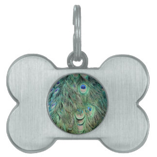 Swag Green And Blue Peacock Feathers Pet ID Tag