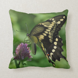 Swallotail Butterfly American MoJo Pillows