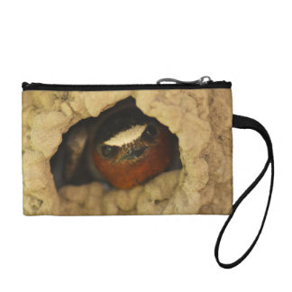 swallow change purses