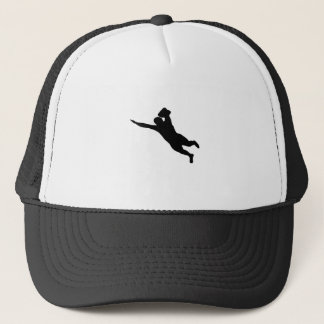 Swallow Dive Trucker Hat