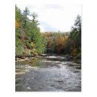 Swallow Falls State Park Postcard
