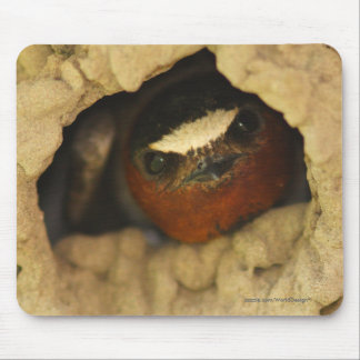 Swallow Mouse Pads