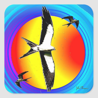 Swallow Tail Kite stickers