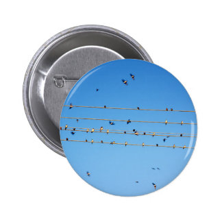Swallows on wire 6 cm round badge