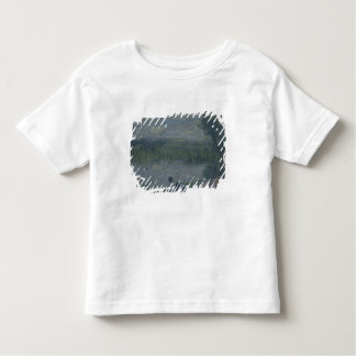 Swallows Toddler T-Shirt