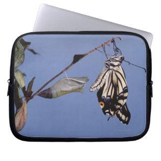 Swallowtail butterfly after metamorphosis laptop sleeve