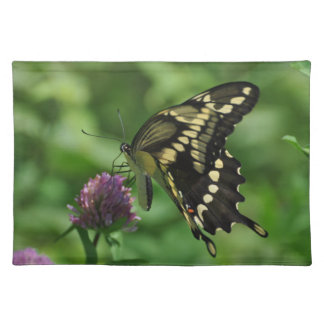 Swallowtail Butterfly American MoJo Placemats