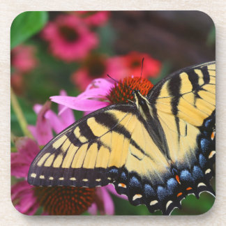 Swallowtail Butterfly Drink Coasters