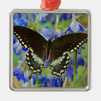 Swallowtail Butterfly on blue Christmas Ornament