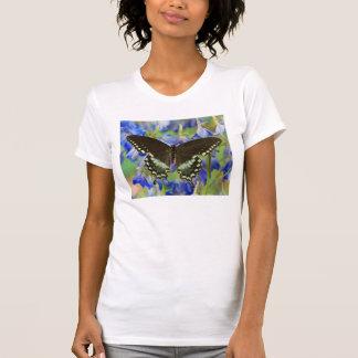 Swallowtail Butterfly on blue T-Shirt