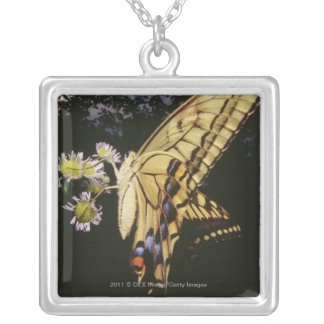 Swallowtail Butterfly on flower, close up Silver Plated Necklace
