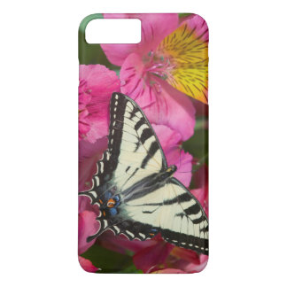 Swallowtail Butterfly on pink iPhone 8 Plus/7 Plus Case