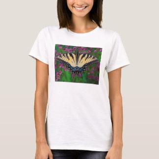 Swallowtail Butterfly on purple T-Shirt