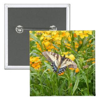 Swallowtail Butterfly on Siberian Wallflowers Pins