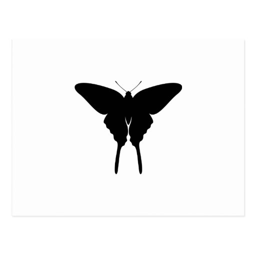 Swallowtail Butterfly Post Card