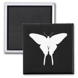 Swallowtail Butterfly Square Magnet