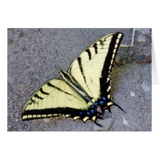 Swallowtail Butterfly with Irish Quote Note Card