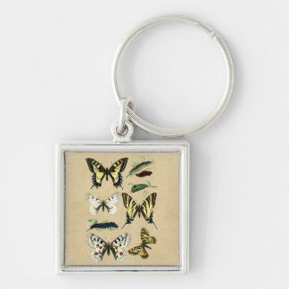 Swallowtail Caterpillars, Butterflies and Moths Silver-Colored Square Key Ring