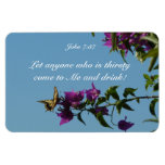 Swallowtail on bougainvillea rectangle magnet