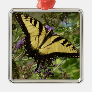 Swallowtail on Butterfly Bush Colorful Nature Silver-Colored Square Decoration