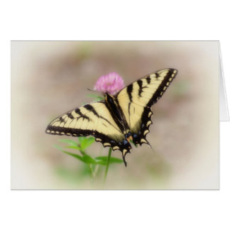 Swallowtail on Clover - Butterfly Card