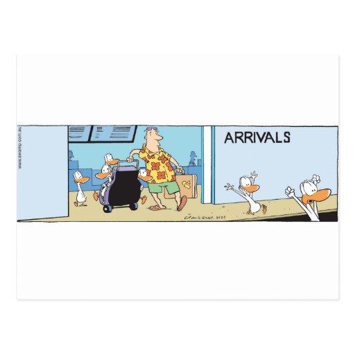 Swamp Ducks Arrival Gate Post Card