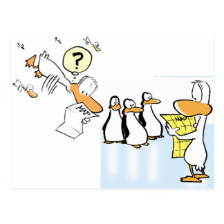 Swamp Ducks Lost Postcard