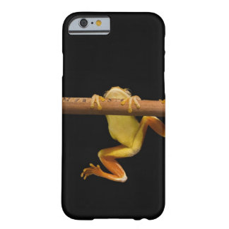 Swamp frog (Limnonectes Leytensis) Barely There iPhone 6 Case