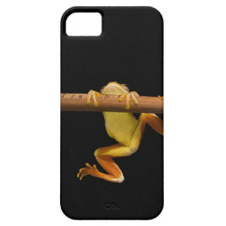 Swamp frog (Limnonectes Leytensis) Case For The iPhone 5