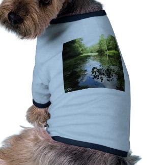 Swamp Reflections Ringer Dog Shirt