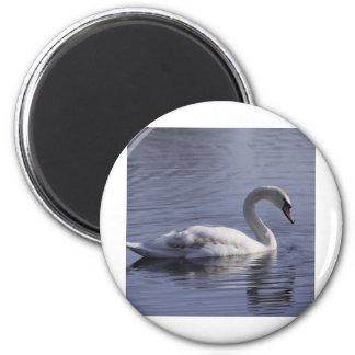 Swan 6 Cm Round Magnet