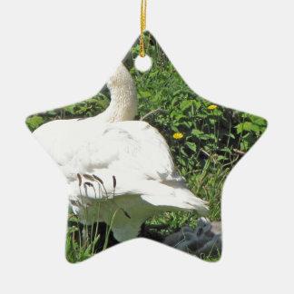 Swan and_cygnets christmas ornament