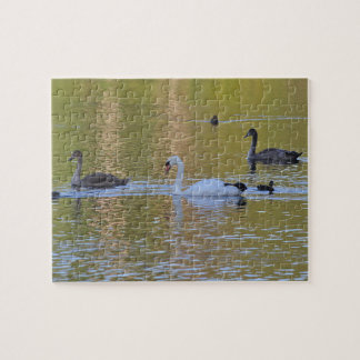 Swan and Cygnets Jigsaw Puzzle