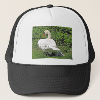 Swan and_cygnets trucker hat